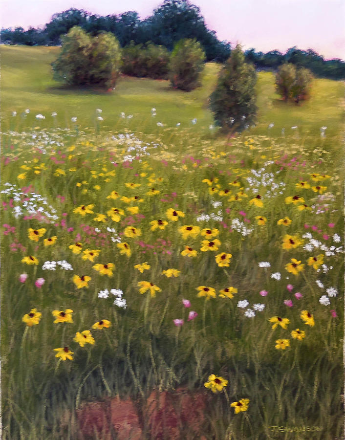 Wildflower Pastel - Summer Wildflowers by Joan Swanson