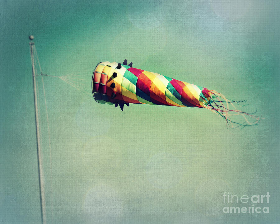 Wind Photograph - Summer Wind by Perry Webster