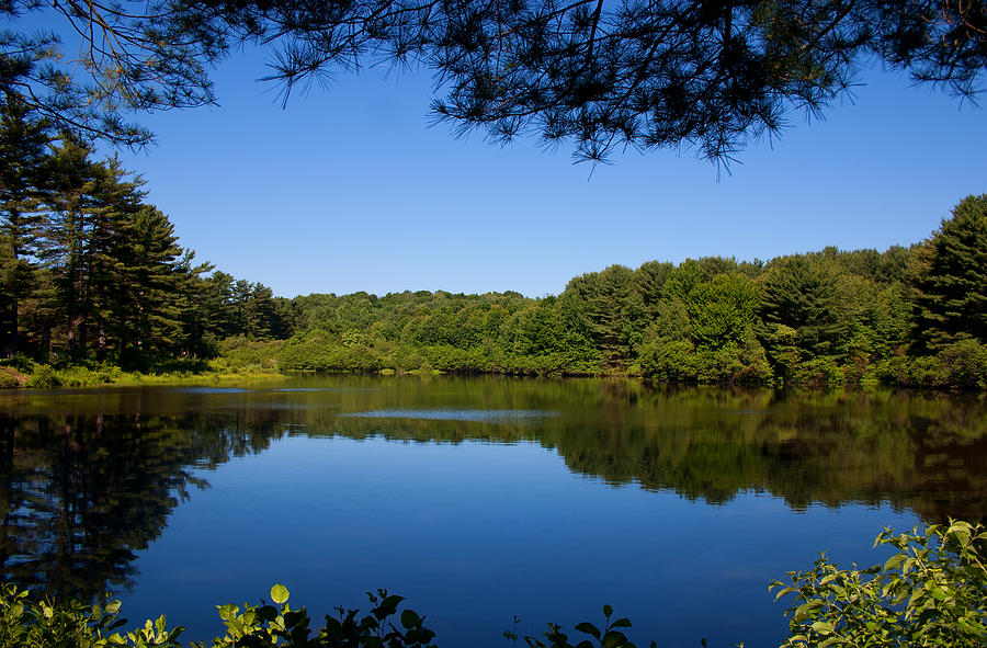 Landscape Photograph - Summers Blue View by Karol Livote