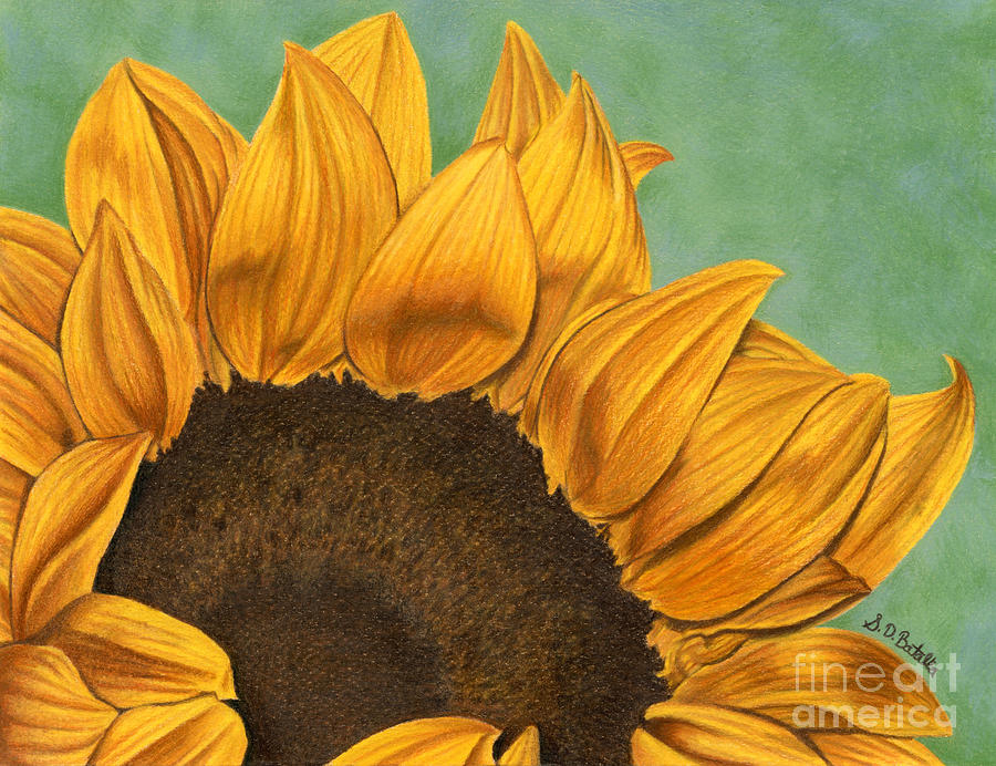 Sunflower Painting - Summers End by Sarah Batalka