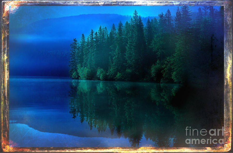 National Forest Photograph - Summertime Blues by The Stone Age