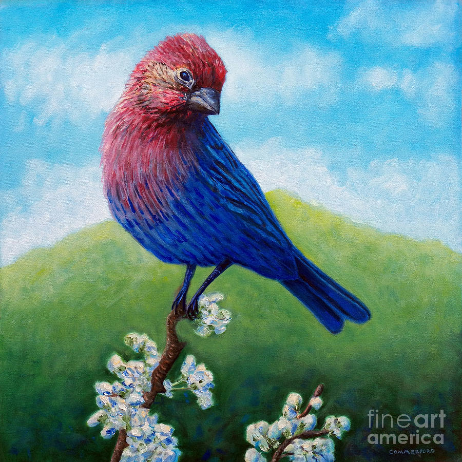 Bird Painting - Summertime by Brian  Commerford