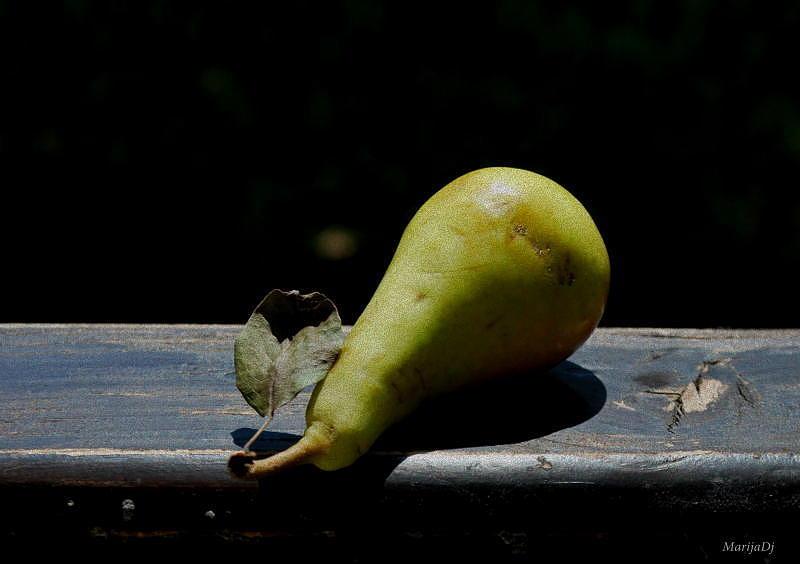 Fruit Photograph - Sun Bathing by Marija Djedovic