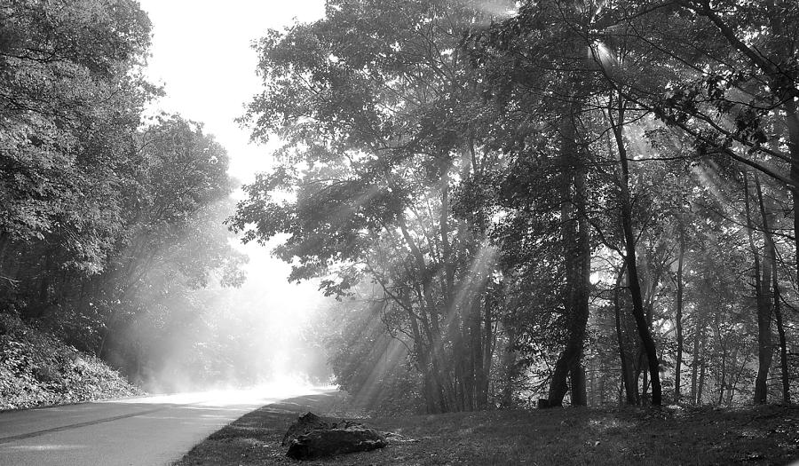 Sun Rays Photograph - Sun Beams by Todd Hostetter