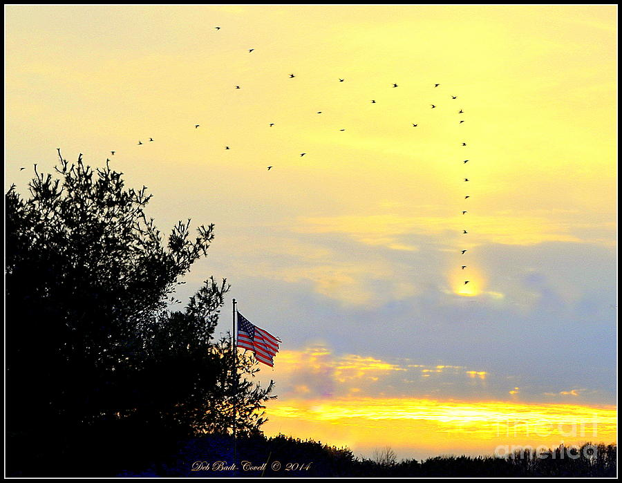 Flag Photograph - Sun Birds by Deb Badt-Covell