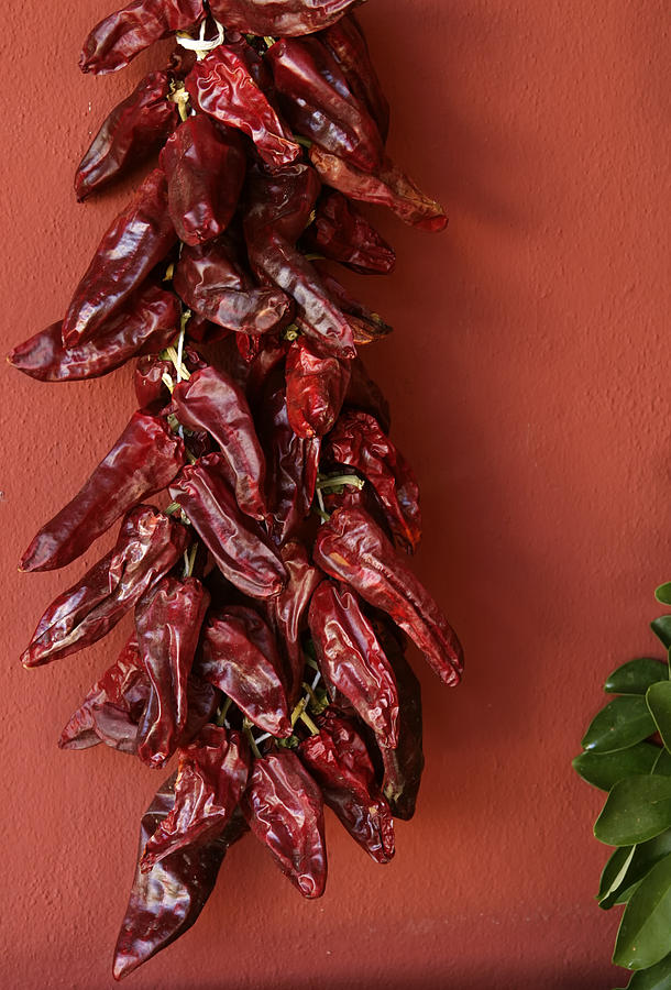 Sun Dried Peppers Photograph