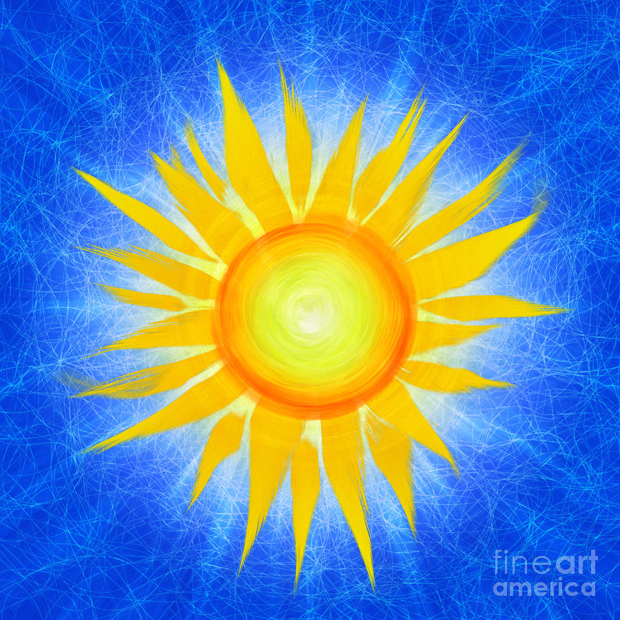 Sun Flower Photograph - Sun Flower by Tim Gainey