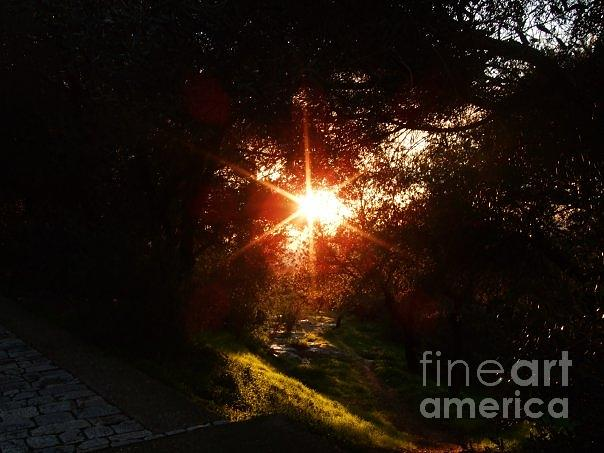 Sunset Photograph - Sun Light -1 by Katerina Kostaki