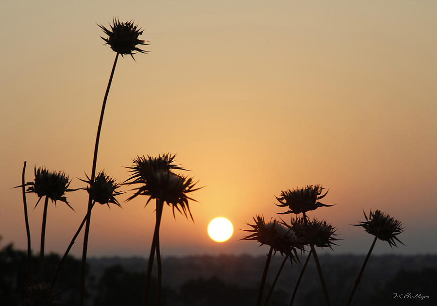 Sun Photograph - Sun Rise On Bethsaida by Jennifer Kathleen Phillips
