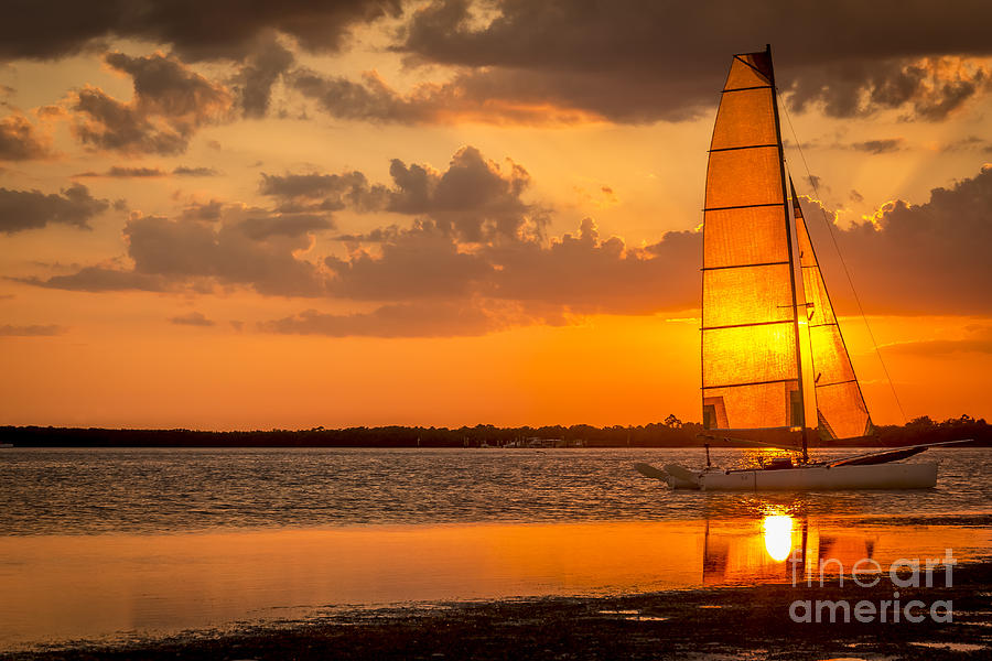 Dunedin Beach Photograph - Sun Sail by Marvin Spates