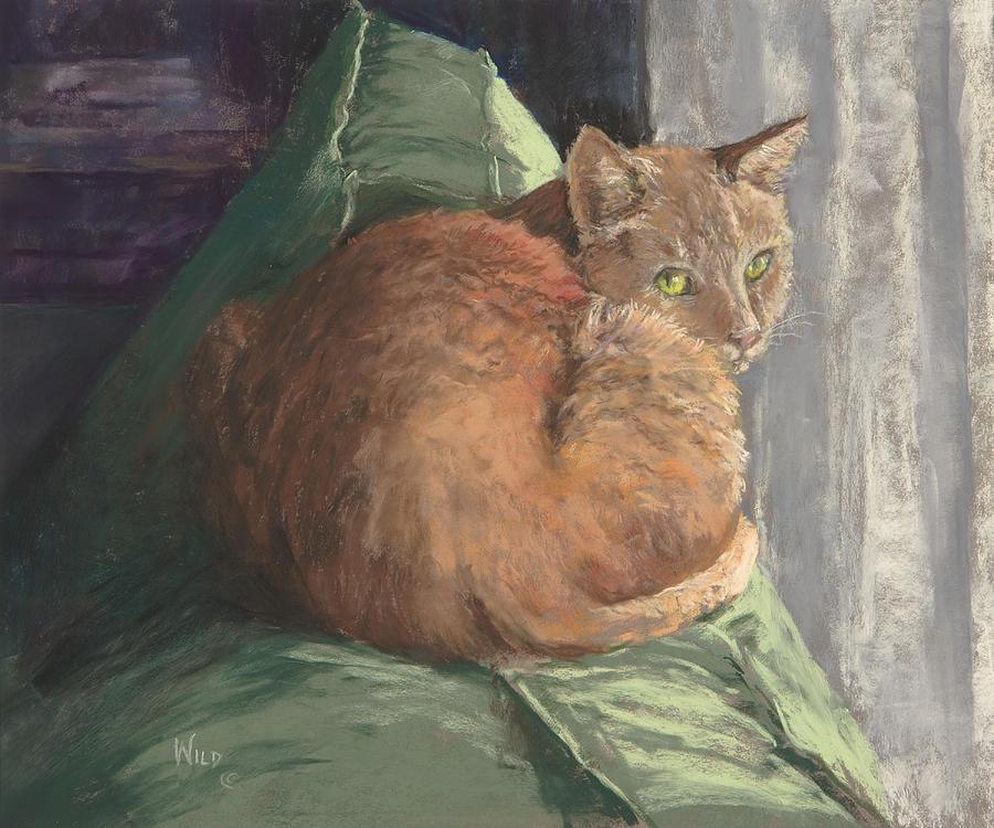 Cat Painting - Sun Seeker I by Paula Wild