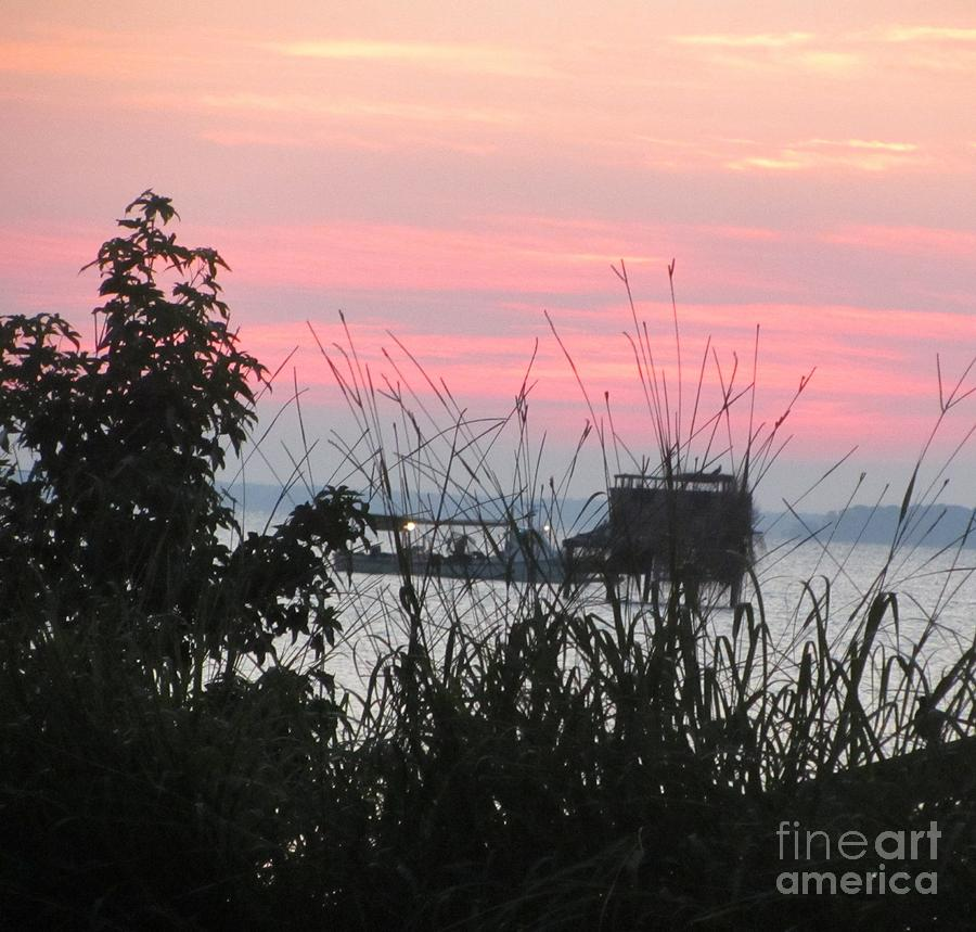 Sea Shore Photograph - Sun To Rise On The Chesapeake Bay by Debbie Nester