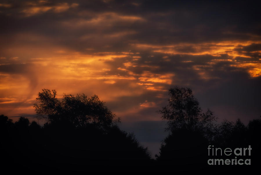 Landscapes Photograph - Sun Up by Thomas Woolworth