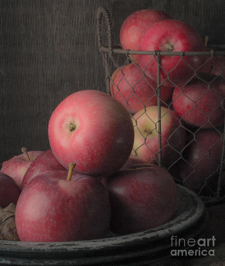 Fruit Photograph - Sun Warmed Apples Still Life Standard Sizes by Edward Fielding