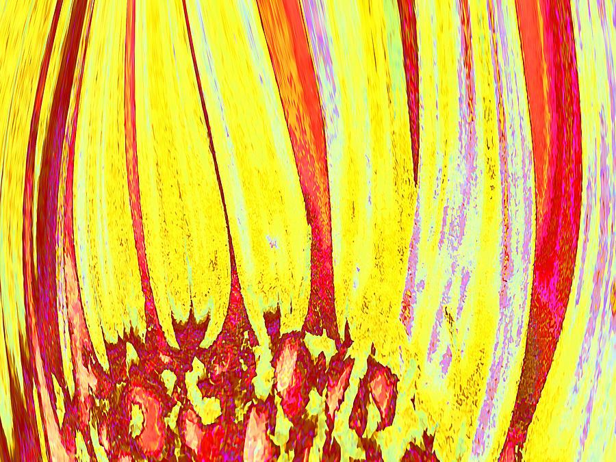 Floral Digital Art - Sun Worshipper by Wendy J St Christopher