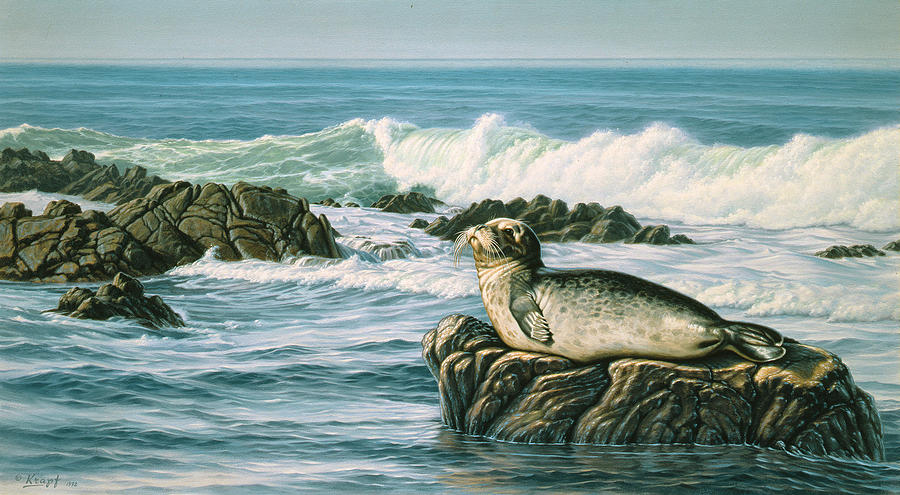 Wildlife Painting - Sunbather  by Paul Krapf
