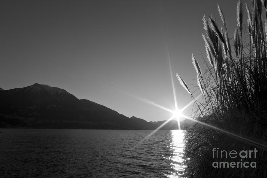 Sunbeam Photograph - Sunbeam by Maurizio Bacciarini