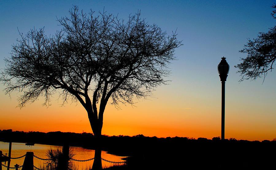 Photograph Photography Photograph - Sundown In South Carolina by Ella Char
