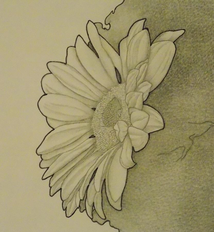 Girl Drawing - Sunflower 2 by Aaron El-Amin