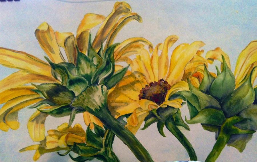 Sunflower 4 by Diane Ziemski
