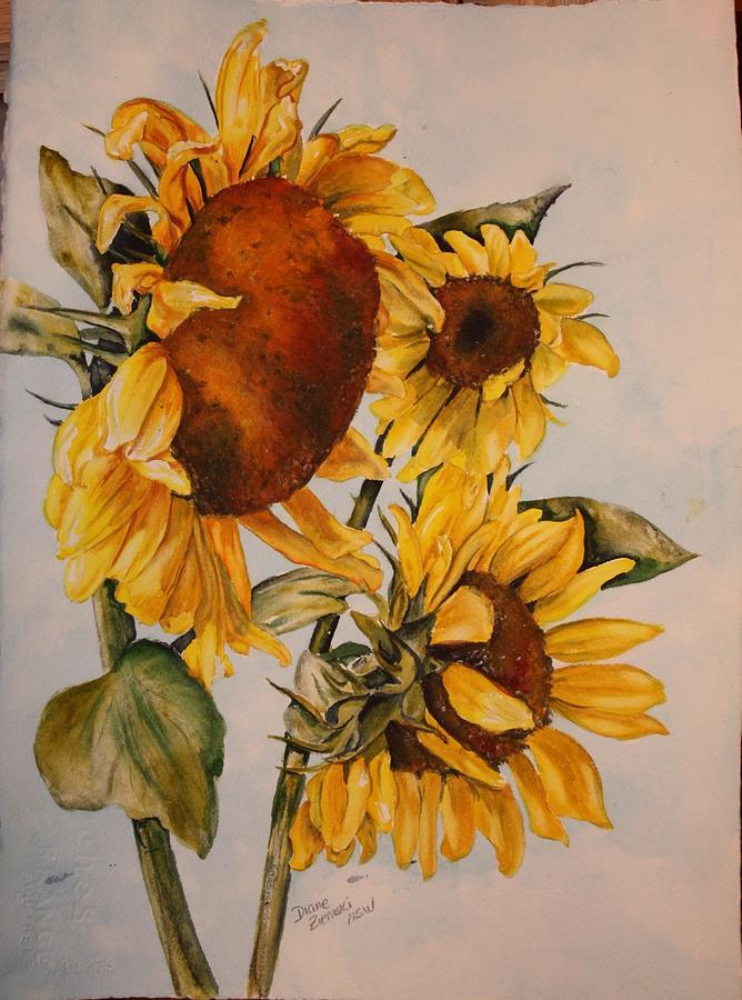 Sunflower 5 by Diane Ziemski