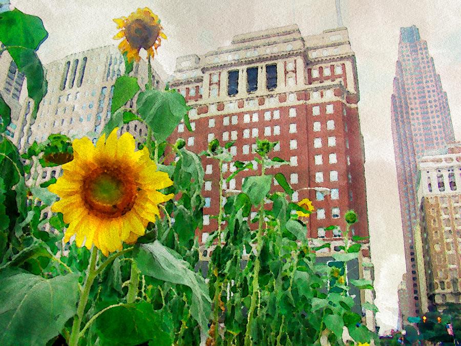 Sunflower Photograph - Sunflower City by Alice Gipson