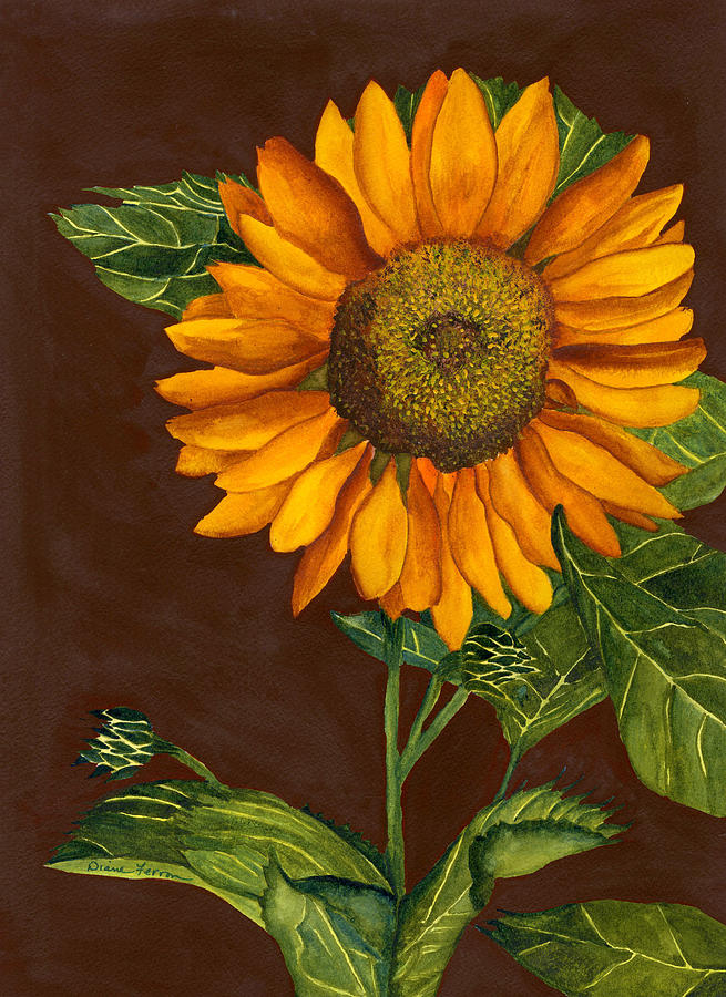 Sunflower Painting - Sunflower by Diane Ferron