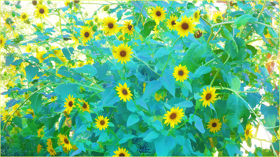 Flower Painting - Sunflower Forest by Douglas MooreZart