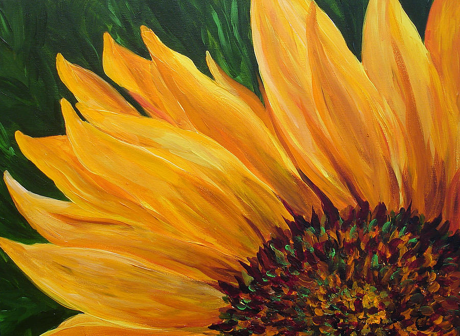 Flowers Painting - Sunflower From Summer by Mary Jo Zorad