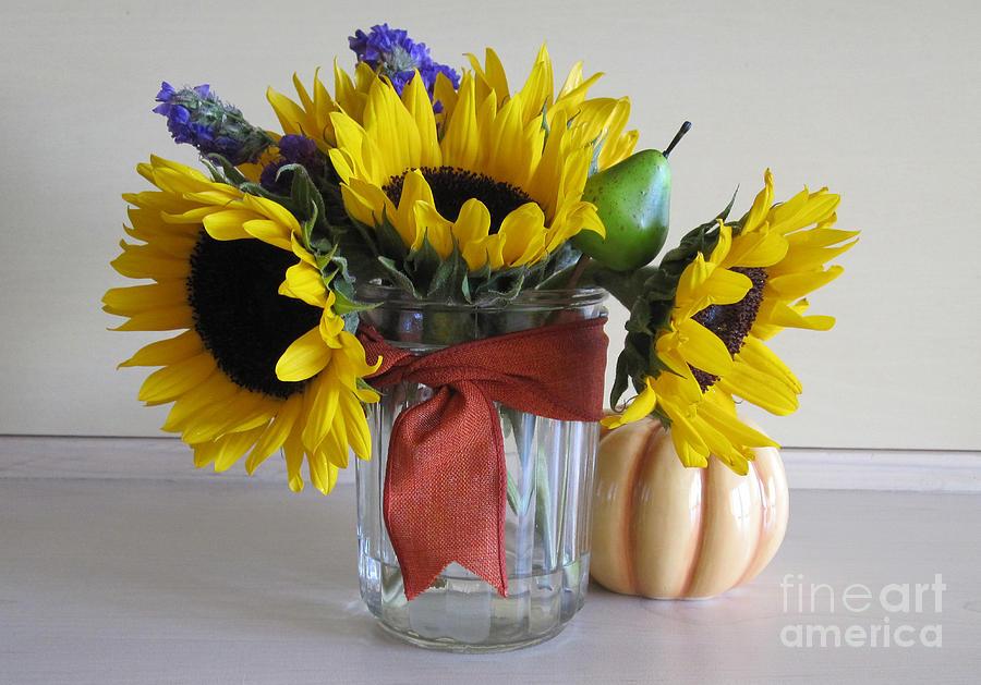 Sunflower Harvest  by Deborah A Andreas