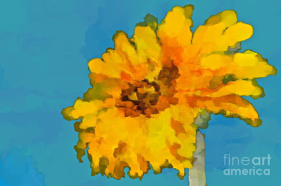 Sunflower Photograph - Sunflower Illusion by Gwyn Newcombe