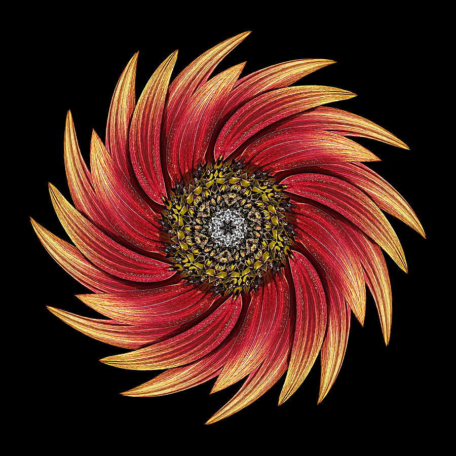 Flower Photograph - Sunflower Moulin Rouge Ix Flower Mandala by David J Bookbinder