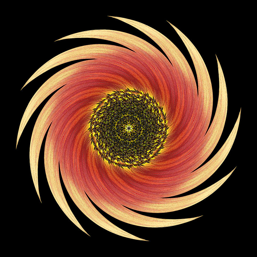 Flower Photograph - Sunflower Moulin Rouge Vii Flower Mandala by David J Bookbinder