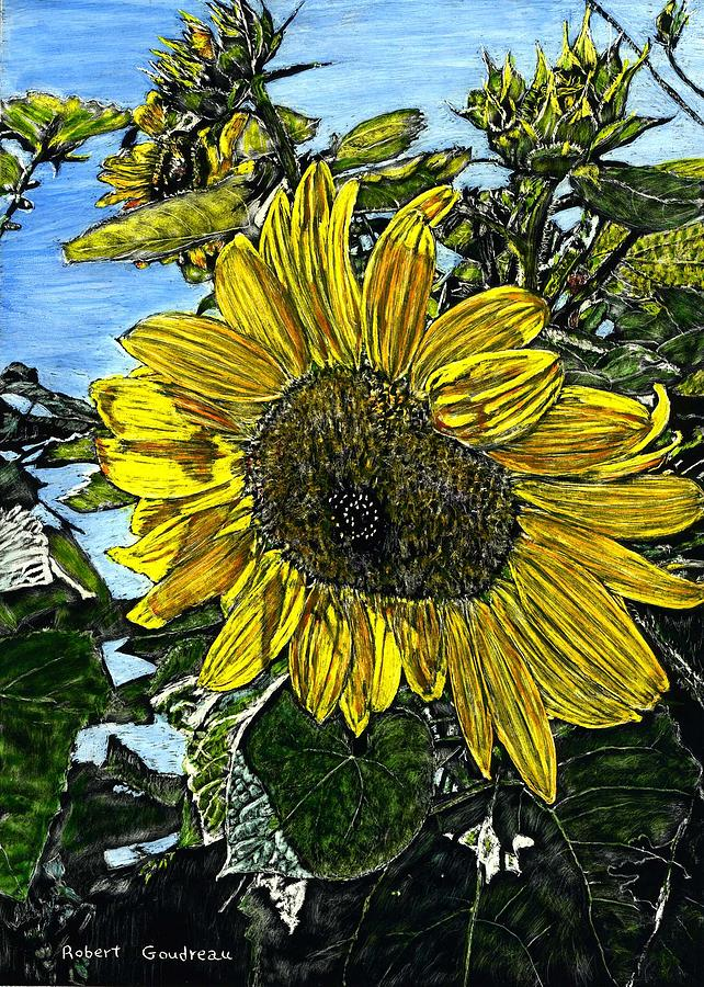 Flowers Painting - Sunflower by Robert Goudreau