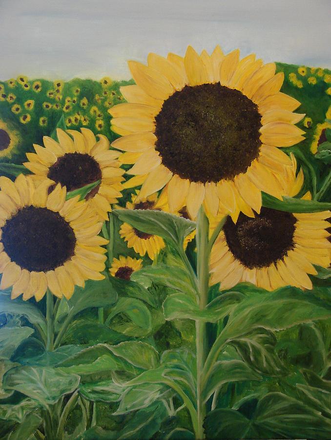 Sunflowers Painting - Sunflower Trail by Shiana Canatella