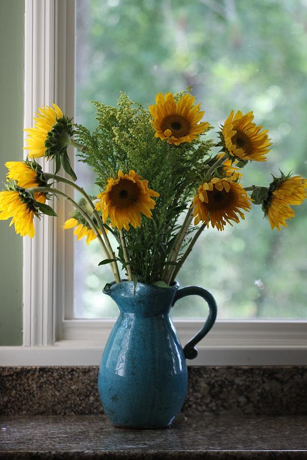 Flower Photograph - Sunflower Window by Paula Rountree Bischoff