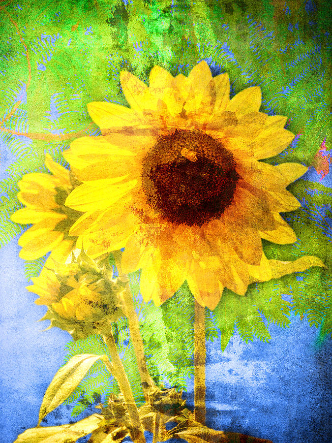 Sunflower with Bee Number Fourteen by Bob Coates