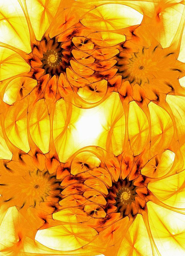 Malakhova Digital Art - Sunflowers by Anastasiya Malakhova