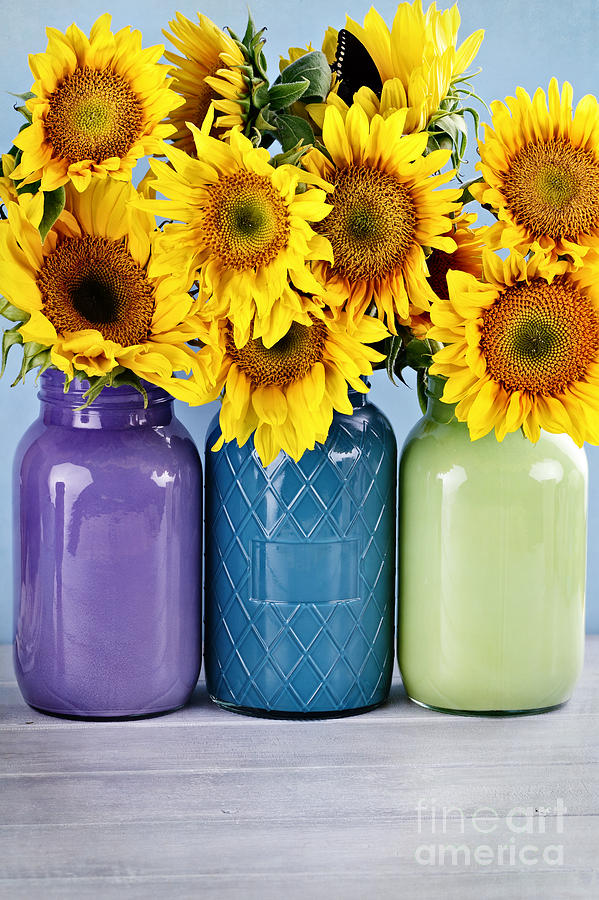 Beautiful Photograph - Sunflowers In Painted Mason Jars by Stephanie Frey