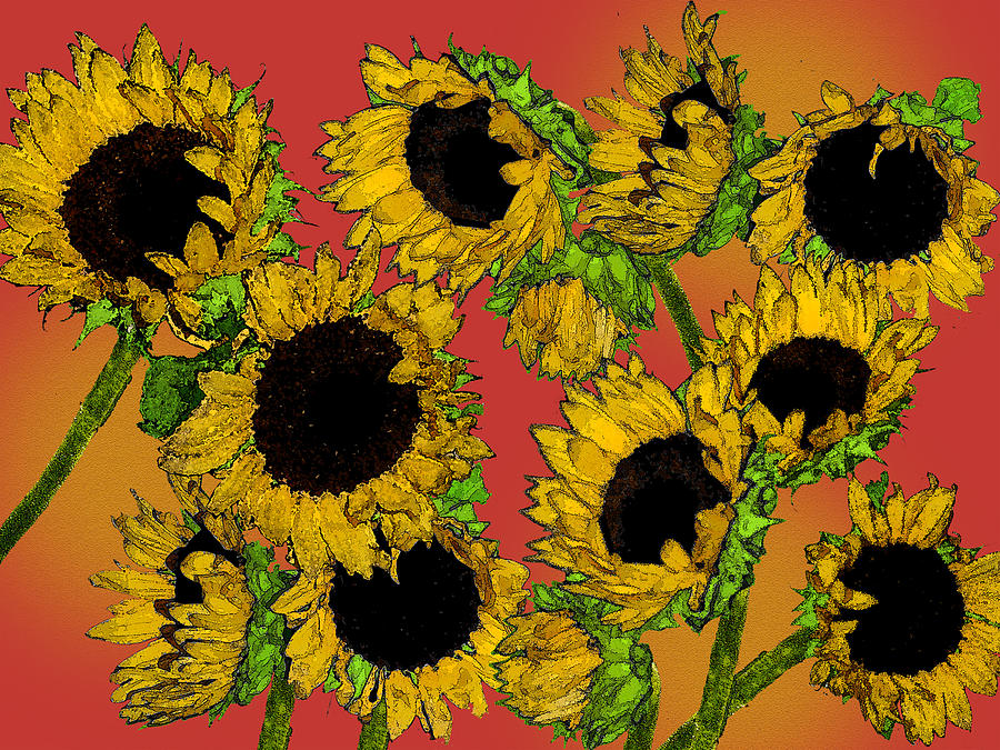 Digital Photograph - Sunflowers by Robert Ashbaugh
