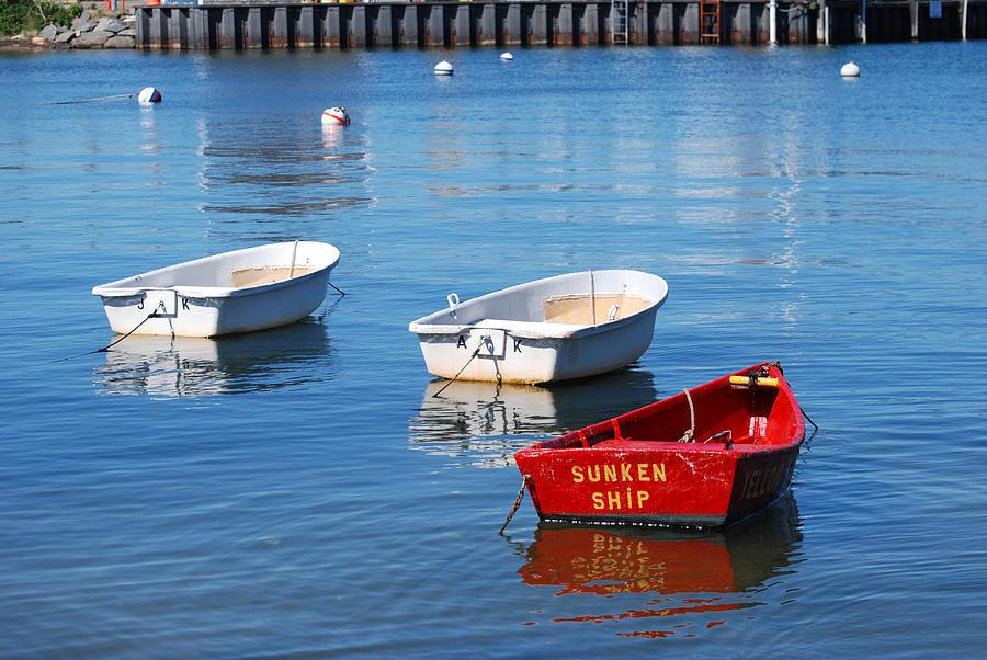 Cape Cod Photograph - Sunken Ship by Lorena Mahoney