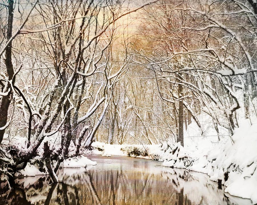 Winter Photograph - Sunkissed Winter Creek by Jai Johnson