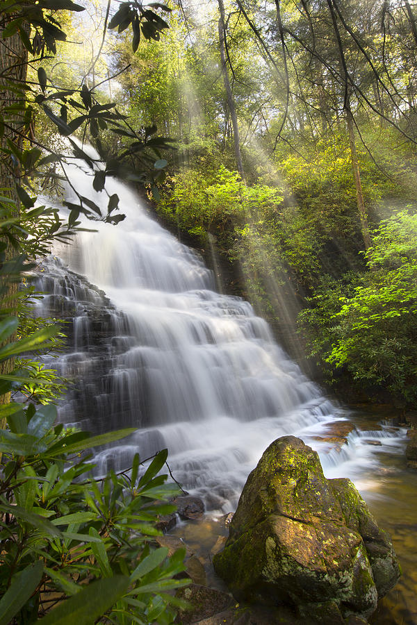 Appalachia Photograph - Sunlight On The Falls by Debra and Dave Vanderlaan