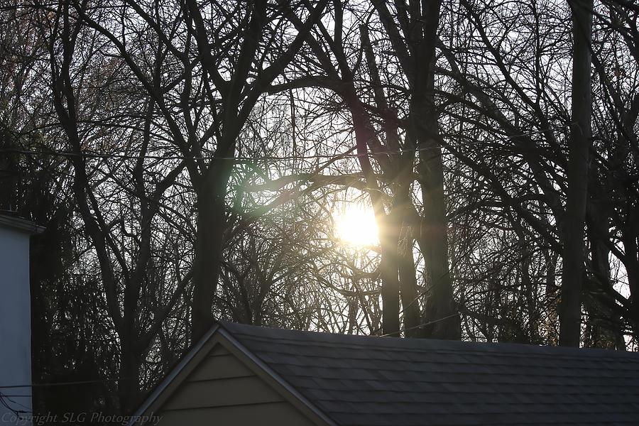 Garage Photograph - Sunlight by Stacie  Goodloe