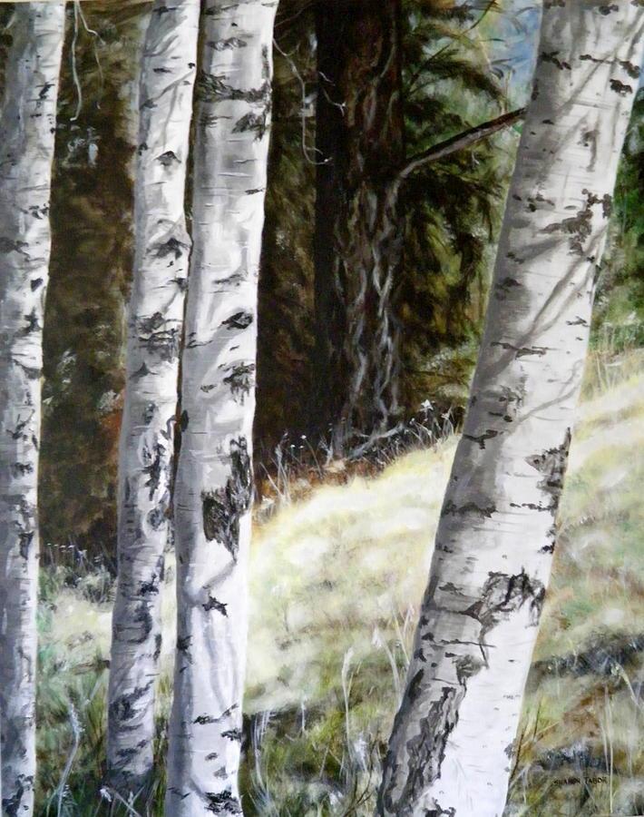 Montana Painting - Sunlit Aspens Davis Creek Montana by Sharon Tabor
