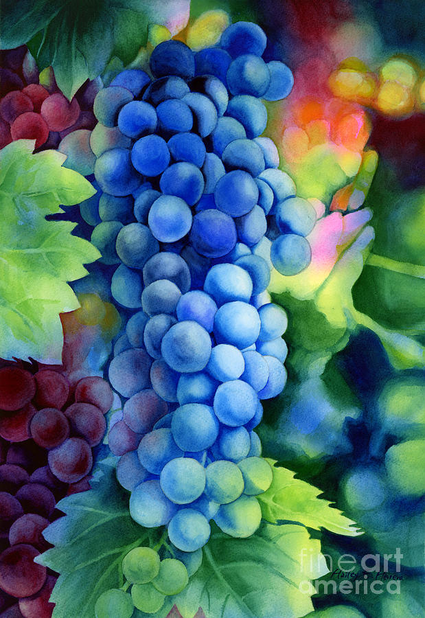 Grapes Painting - Sunlit Grapes by Hailey E Herrera
