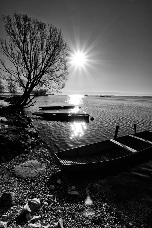 Landscape Photograph - Sunny Day by Davorin Mance