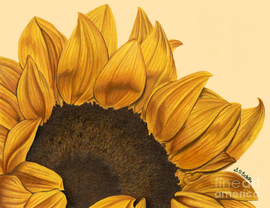 Sunflower Painting - Sunny Flower by Sarah Batalka