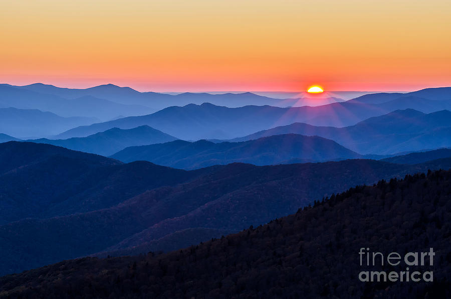 Clingmans Dome Photograph - Sunny Side Up by Anthony Heflin