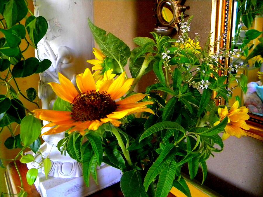 Sunny Sunshine  by Sian Lindemann